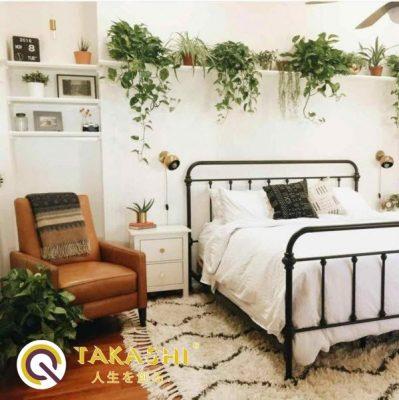 phòng ngủ có cây xanh